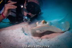 diver and stingray by Babula Mikulova