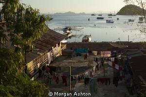 The town of Labuan Bajo on the island of Flores near Komo... by Morgan Ashton