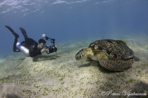Sidemount photographer and old green turtle. Canon 7D. To... by Petteri Viljakainen