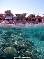 Over under house reef and dive centres by Laura Dinraths