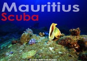 Republic of Mauritius -Scuba Mauritus  Flic en Flac 20me... by Linley Jean-Yves Bignoux