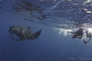 Black manta and photographers. Canon 7D. Tokina 10-17. by Petteri Viljakainen