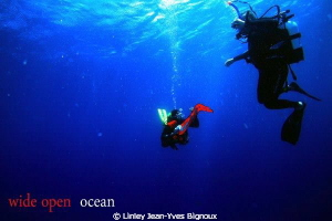 Canon 7d -Balaclava dive site in Turtle bay max dive dept... by Linley Jean-Yves Bignoux