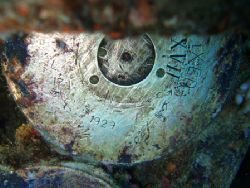 missle from Thislegorm, wreck in Red Sea. missle made in ... by Jakub Patynek