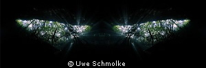 Watching you - Image is mirrored by Uwe Schmolke