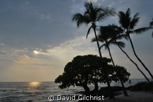 Banyon Beach, Kona Hawaii by David Gilchrist