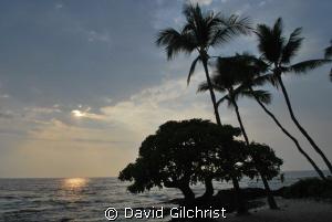 Banyon Beach, Kona Hawaii by David Gilchrist