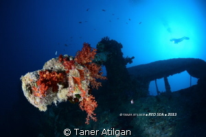 one of the guns of Thistlegorm by Taner Atilgan