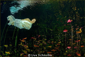 In a gadda da vida by Uwe Schmolke