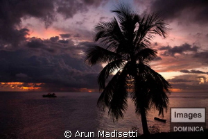Dive boat gong on a night dive by Arun Madisetti