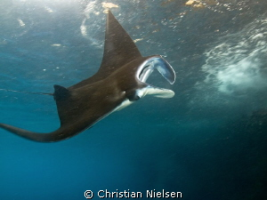 Another nice manta encounter on Nusa Penida by Christian Nielsen