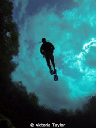 Alexander Springs Florida diver flying through the sky.  ... by Victoria Taylor