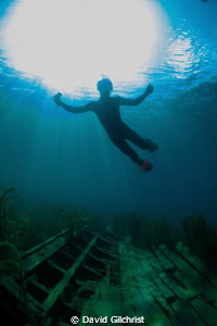 Freediver at the Tug site, Little Tub Harbour, Tobermory,... by David Gilchrist