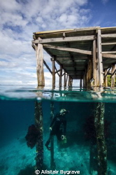 snorkelling under pier in raja ampat by Alistair Bygrave