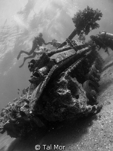Tank in Aqaba - My shots are uploaded just for fun and te... by Tal Mor