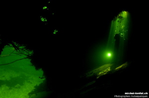 Cave diving - Okavango Delta River. by Michel Lonfat