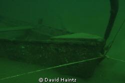 Freahwater dive at Lake Eacham, Queensland, Australia. Ph... by David Haintz
