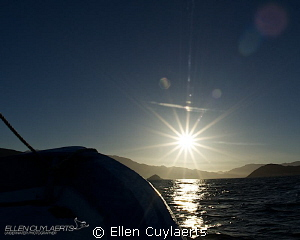 Memory of Sea of Cortez, unspoiled landscapes. Picture wa... by Ellen Cuylaerts