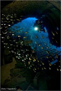 Abu Nuhas reef. Kimon-M by Dmitry Vinogradov
