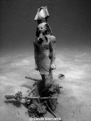 Tutankhamon is still alive and he's diving in the Red Sea... by Cinzia Bismarck