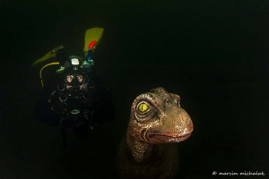 My new dive buddy by Marcin Michalak