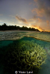 Maldivian sunset by Yoav Lavi