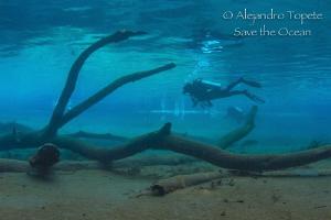 Divers in Blue, Las Estacas Mexico by Alejandro Topete