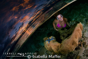 """WAI: THE UNDERWATER QUARTER""