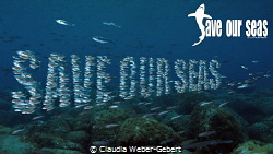 Save Our Seas by Claudia Weber-Gebert