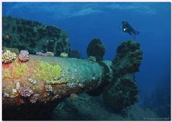 Wreck of the AL KAHFAIN, Safaga, Egypt by Reinhard Arndt