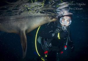 Jero with Sea Lion, La Paz Mexico by Alejandro Topete