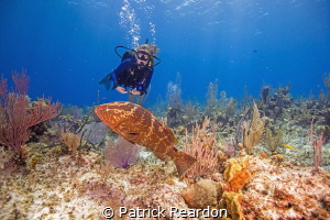 "Daughter, Jenny and Freddy, the ""Labrador grouper"" by Patrick Reardon"