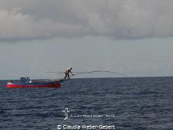 Peto-fisherman on EL HIERRO,Canary Islands. Since no ind... by Claudia Weber-Gebert