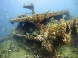 Gibraltar Wreck, deteriorating over time due to weather by Tim Dobbs