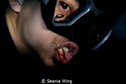 dental care by Seania Wing