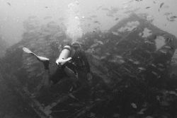 Dive Aruba's Clive Paula explores the wreck of the Antill... by Matthew Shanley