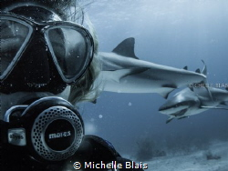 While doing a Shark Dive with Stuart Coves in Bahamas, I ... by Michelle Blais