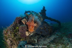This little engine wreck from world war 2 sits by its sel... by Vincenzo Apuzzo