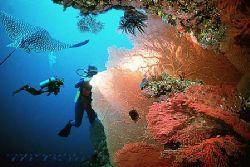 Solomon Islands - Ghizo - Nik_RS-subtronic strobe - COMPO... by Manfred Bail