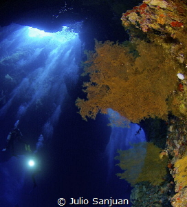 Big cave, coral, gorgonian, bubbles, light and divers....... by Julio Sanjuan