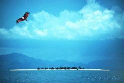 borneo, sabah, near sipadan island, Nik-F90- COMPOSING-e... by Manfred Bail