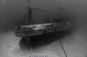 As the Fog Rolls In  /  From this angle, the Kittiwake lo... by Pam Murph
