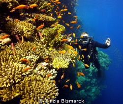 """""""CLOSE TO THE REEF"""" by Cinzia Bismarck"""