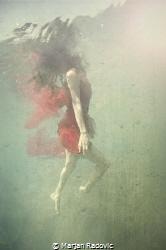"""""""Miss"""" by Marjan Radovic"""