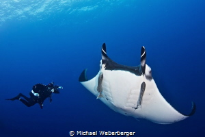 Underwater photographer is doing his job by Michael Weberberger
