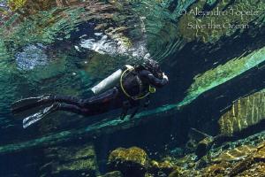Diver in the suface, Las Estacas Mexico by Alejandro Topete