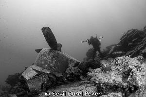 Plane wreck  by Sevıl Gurel Peker