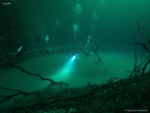 Cenote Angelita with a Hydrogen sulfid layer. by Stéphane Primatesta