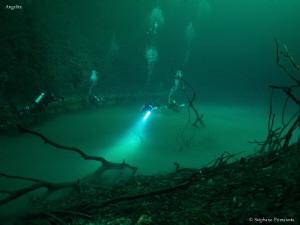 Cenote Angelita with a Hydrogen sulfid layer. by Stéphane Primatesta