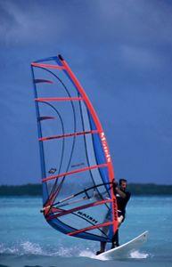 In a break from diving in Bonaire, this windsurfer was sh... by Len Deeley